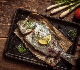 דג צילום: שאטרסטוק